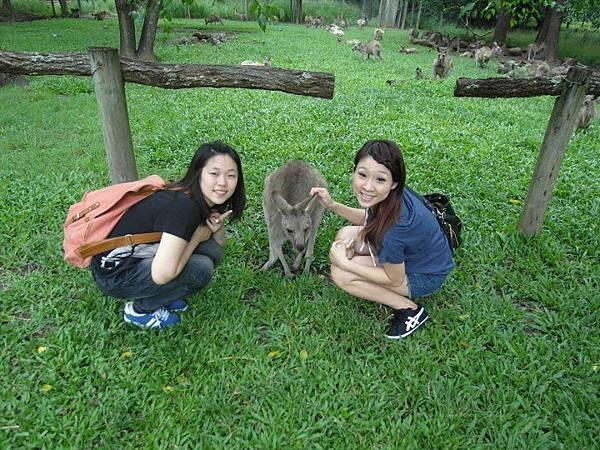 14 Kangaroo x Kelly x Penny