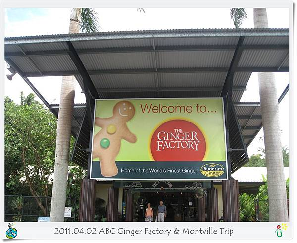 ABC Ginger Factory & Montville Trip