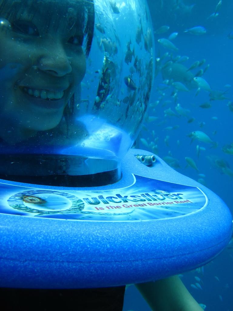 帶團出海當導遊Sasa免費體驗在大堡礁海底漫步