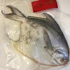魚寶貝_2405
