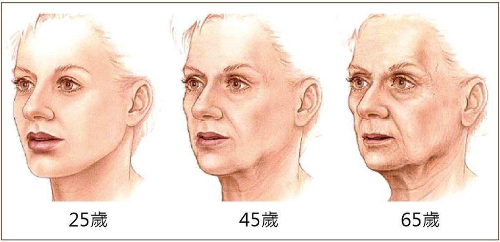 肌膚老化.jpg