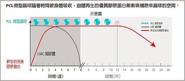 PCL Ellanse晶球代謝.jpg