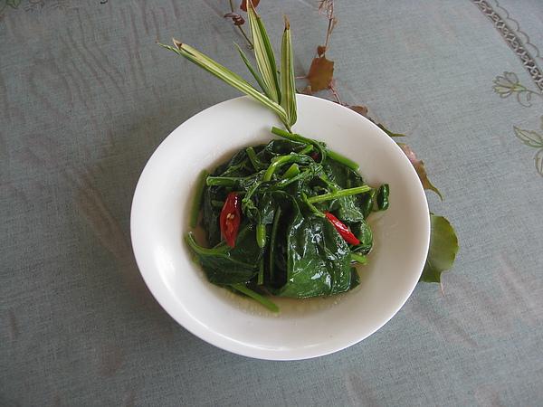 紅磚-菜6