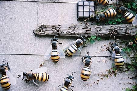 蜜蜂故事館1s.jpg
