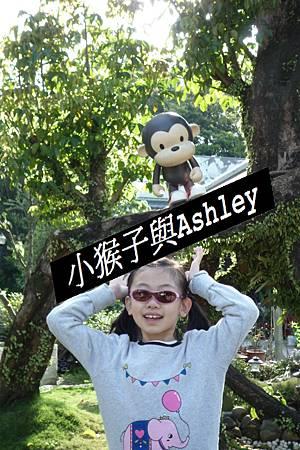 小猴子與Ashley