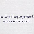 076. I am alert to my opportunities and I use them well.
