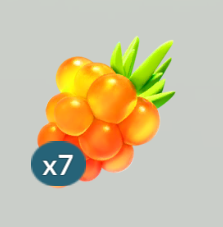 金莓果.png