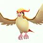 018 大比鳥.png