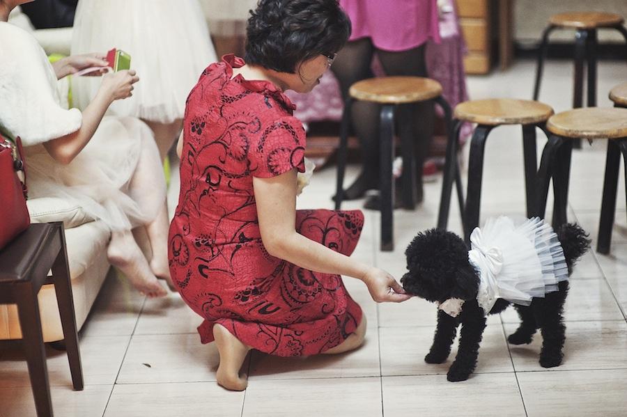 Lin & Sunnie's Wedding002.jpg
