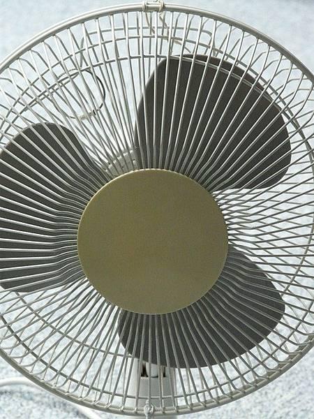 電風扇與循環扇差別.jpg