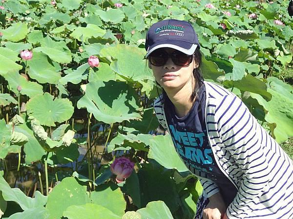 PhotoCap_DSC00442.jpg