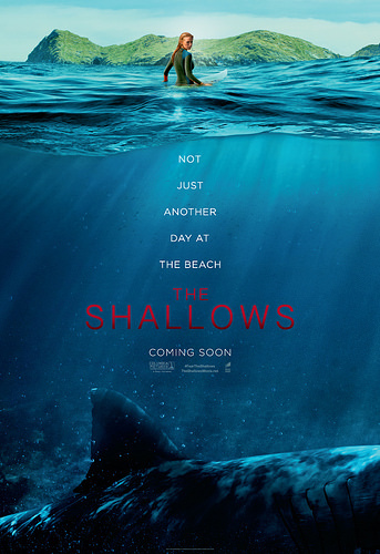 the shallows.jpg