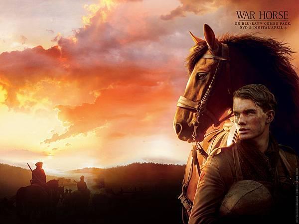 war-horse-dl-wallpaper-1600x1200-1