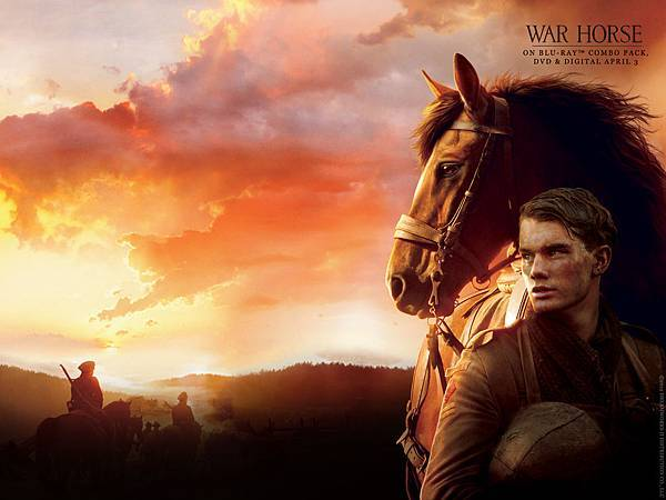 war-horse-dl-wallpaper-1600x1200-1