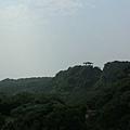 社頂公園>>瞭望山景