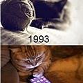 【可愛的貓貓】你以為只有人類會隨著時代和科技演進嗎?貓貓們也是!!