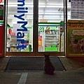 【可愛的貓貓】凌晨1點多,孕喵媽又來到全家店門口乞食【可愛的貓貓】凌晨1點多,孕喵媽又來到全家店門口乞食