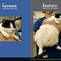 【可愛的貓貓】fb上的正妹都是騙人的...
