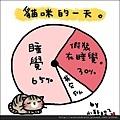【可愛的貓貓】貓咪的一天大解析