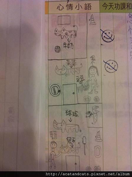 【貓咪日記】小學生在聯絡簿畫「貓咪日記」 老師好感動