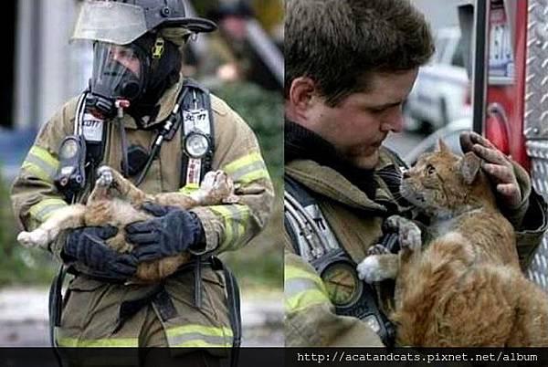 【火災中被救出的貓咪】看它那感激的眼神,這一刻,心都被融化了