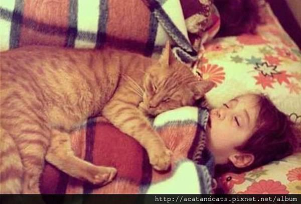 【可愛的貓貓】貓貓累累要先去休息一下囉^^