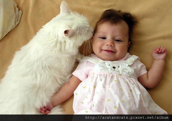 【可愛的貓貓】好幸福唷~~嘻嘻~~