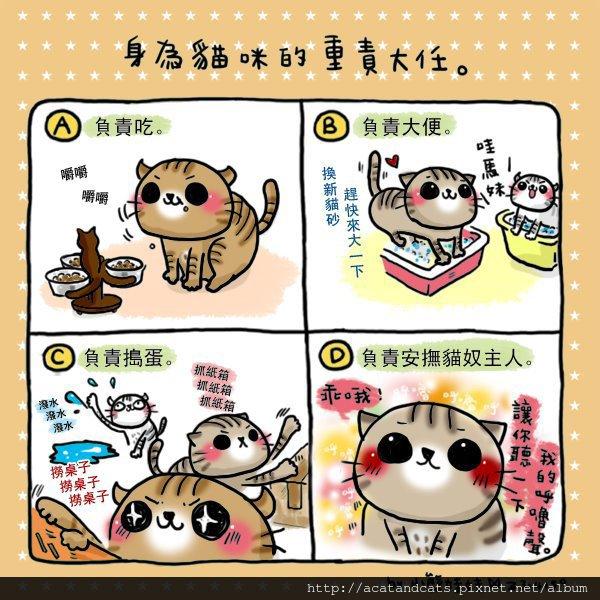 【可愛的貓貓】貓咪表示:「執行完D之後,就可以繼續A、B、C了。(́◉◞౪◟◉‵)」