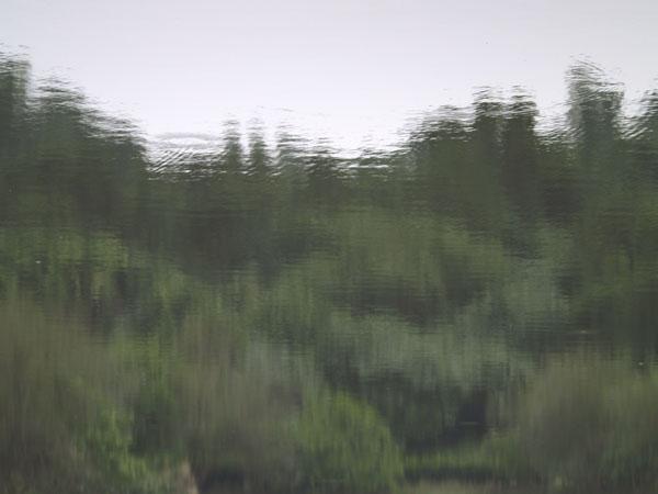 2010112303.jpg