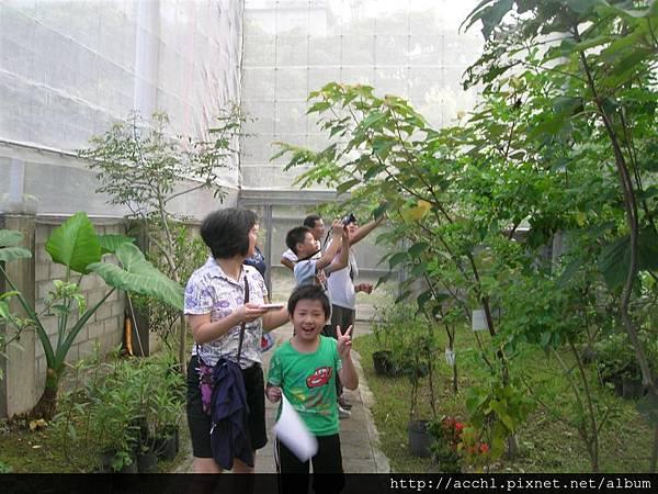 7-1李小姐 (Large)