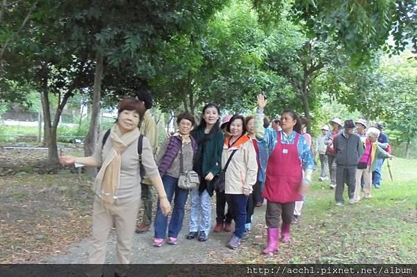 台北信義社區銀髮族