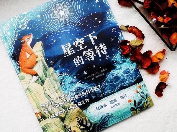 繪本 童書 星空下的等待 生命課題 1.jpg