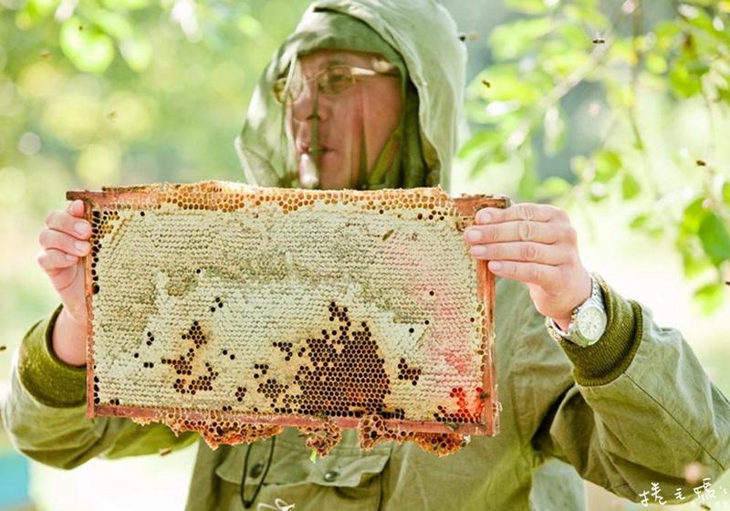 母親節禮盒推薦 生蜂蜜 蜂蜜 禮盒推薦 俄羅斯生蜂蜜 雪蜜02.jpg