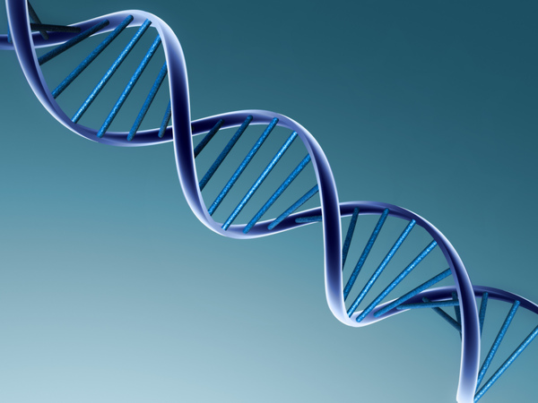 dna-double-helix.jpg