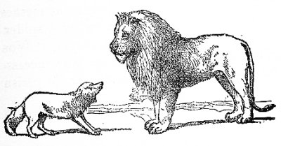 The_Fox_and_the_Lion.jpg