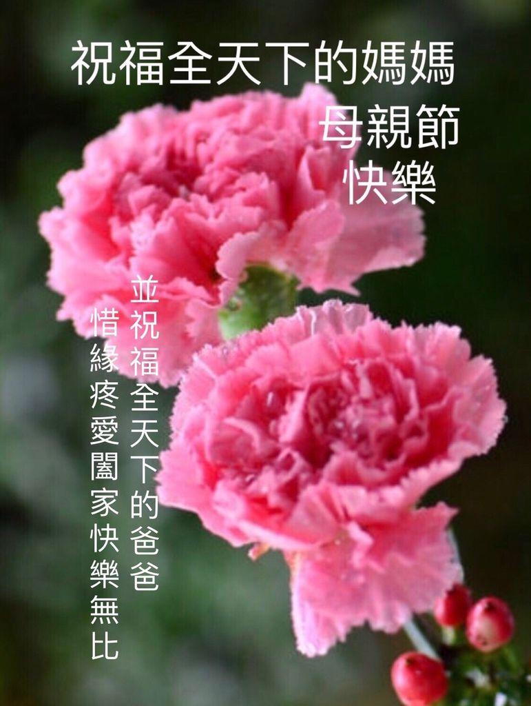 S__12370032.jpg