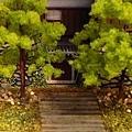 犬山3.jpg