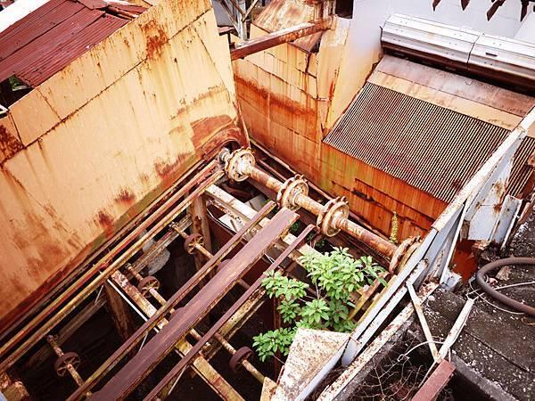 橋頭糖廠廢墟.jpg