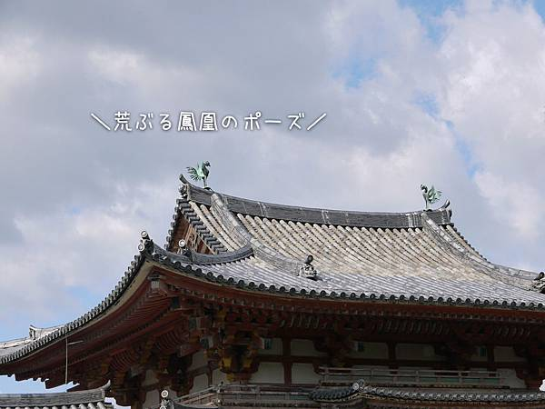 1108-平等院鳳凰堂2