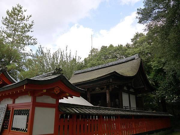 1108-宇治神社2