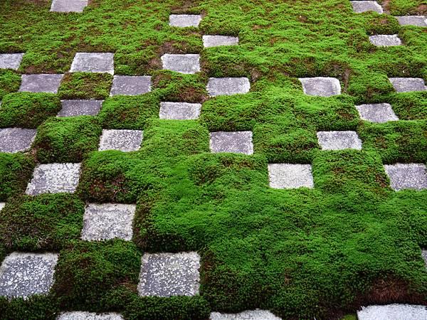 1108-東福寺方丈庭園4