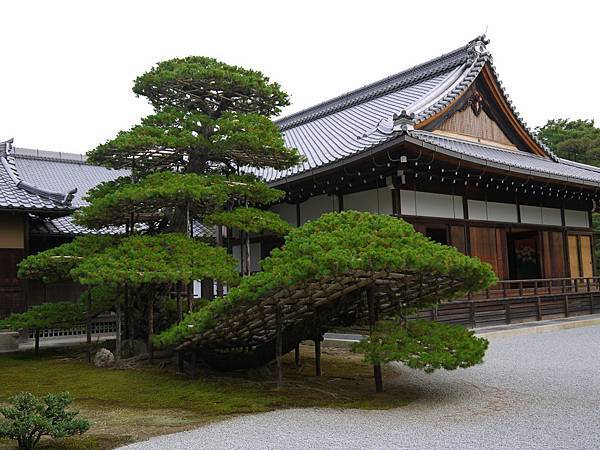 1109-金閣寺2