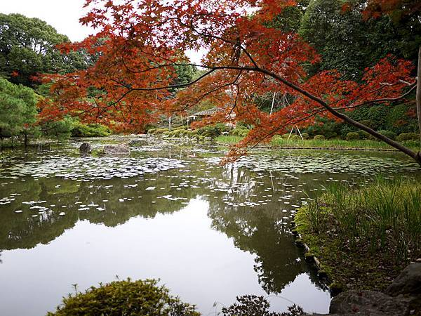 1110-平安神宮神苑2