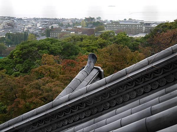 1111-彥根城天守遠眺