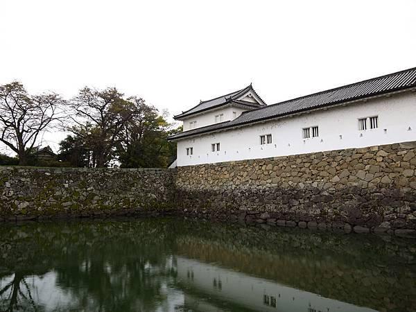 1111-彥根城護城河