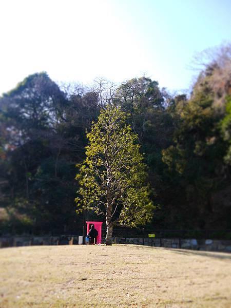 任意門與一本木