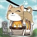 aircat-1-1.jpg