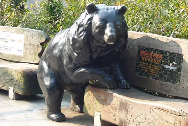 台灣黑熊-要不要坐呢.jpg