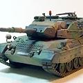 leopard1-1.jpg