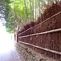 0908竹林道.jpg
